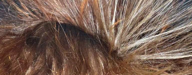 secadores de pelo ionicos evitan encrespamiento