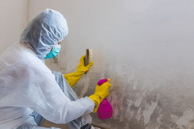 Como quitar definitivamente la humedad de las paredes