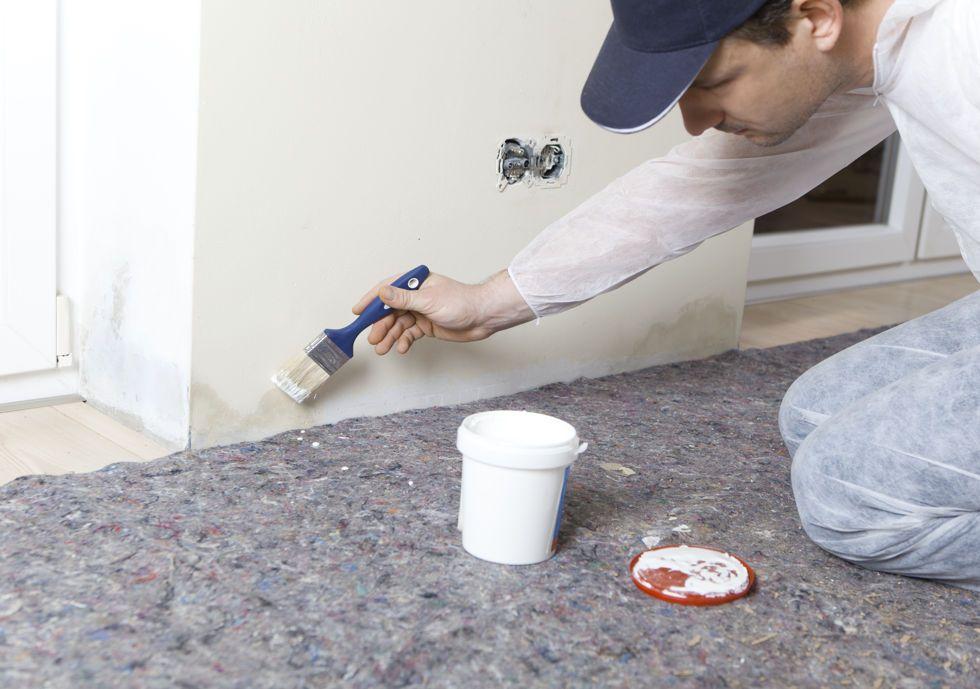 Como quitar el moho de las paredes sin dañar la pintura