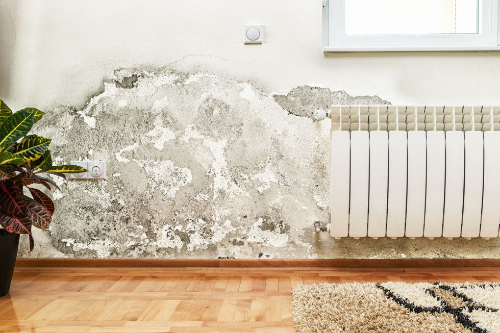 Manchas de humedad en la pared por capilaridad