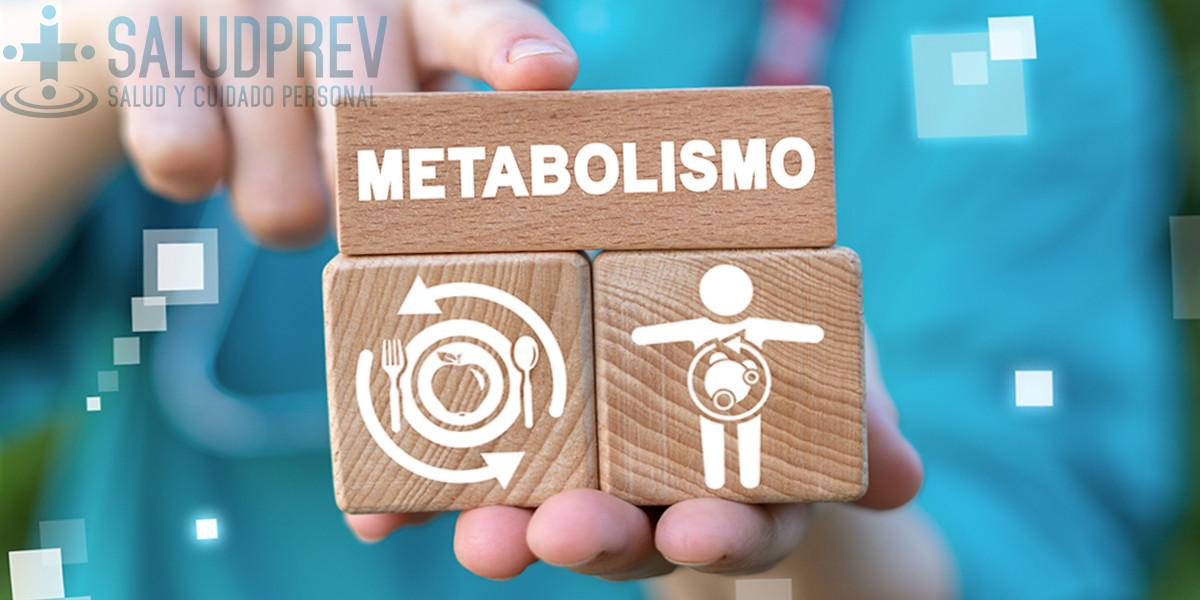 Metabolismo en la dieta keto